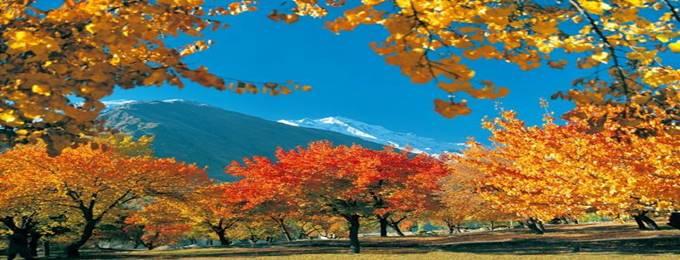 6 days tour to hunza valley, naltar, khunjurab pass autumn tour
