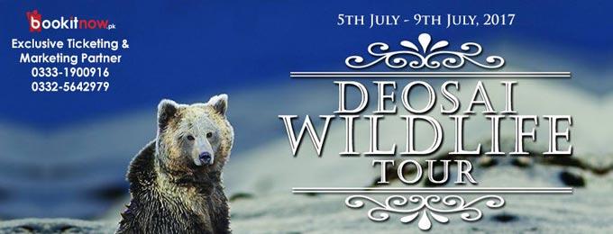 deosai wildlife tour
