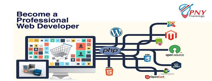 become a professional web developer