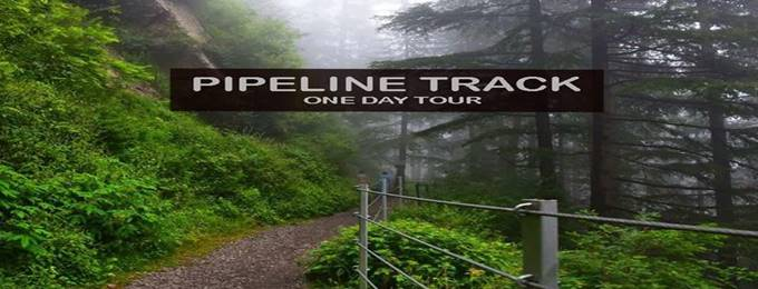 day tour to pipeline track dunga gali