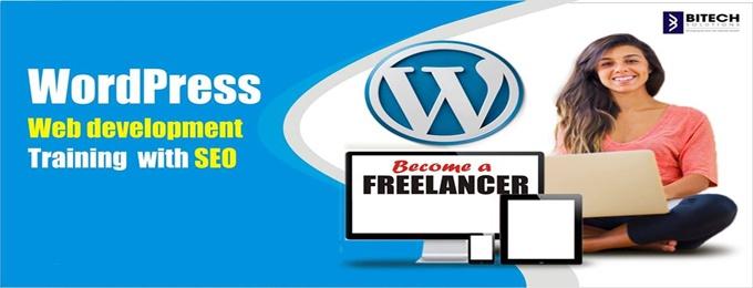 wordpress web development and seo training.
