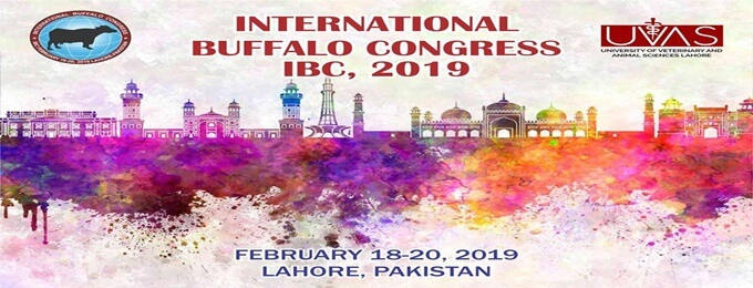 international buffalo congress