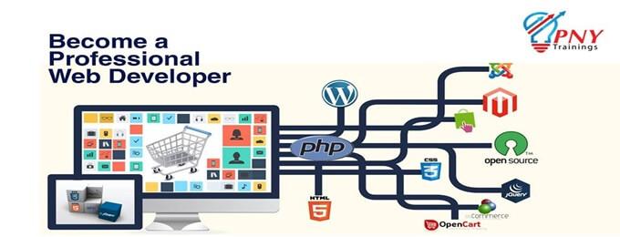become a professional web developer