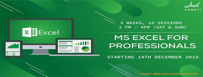 ms excel for professionals