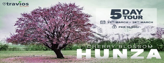 hunza - cherry blossom: 5 day tour