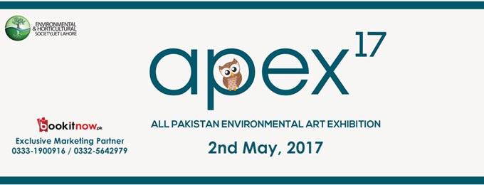 apex'17 -all pakistan environmental art exhibition